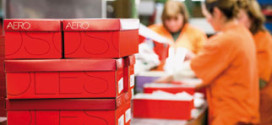 Empresa que detém licença da marca Aerosoles vai encerrar 16 lojas (RTP)