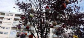Chegou o Natal ao Jardim do Cáster