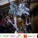Carnaval de Ovar - Domingo