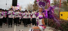 """Para quem é do samba, aí está o """"Samba Com Vida"""""""