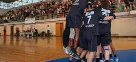 Avanca defronta Sporting na Taça de Portugal de Andebol